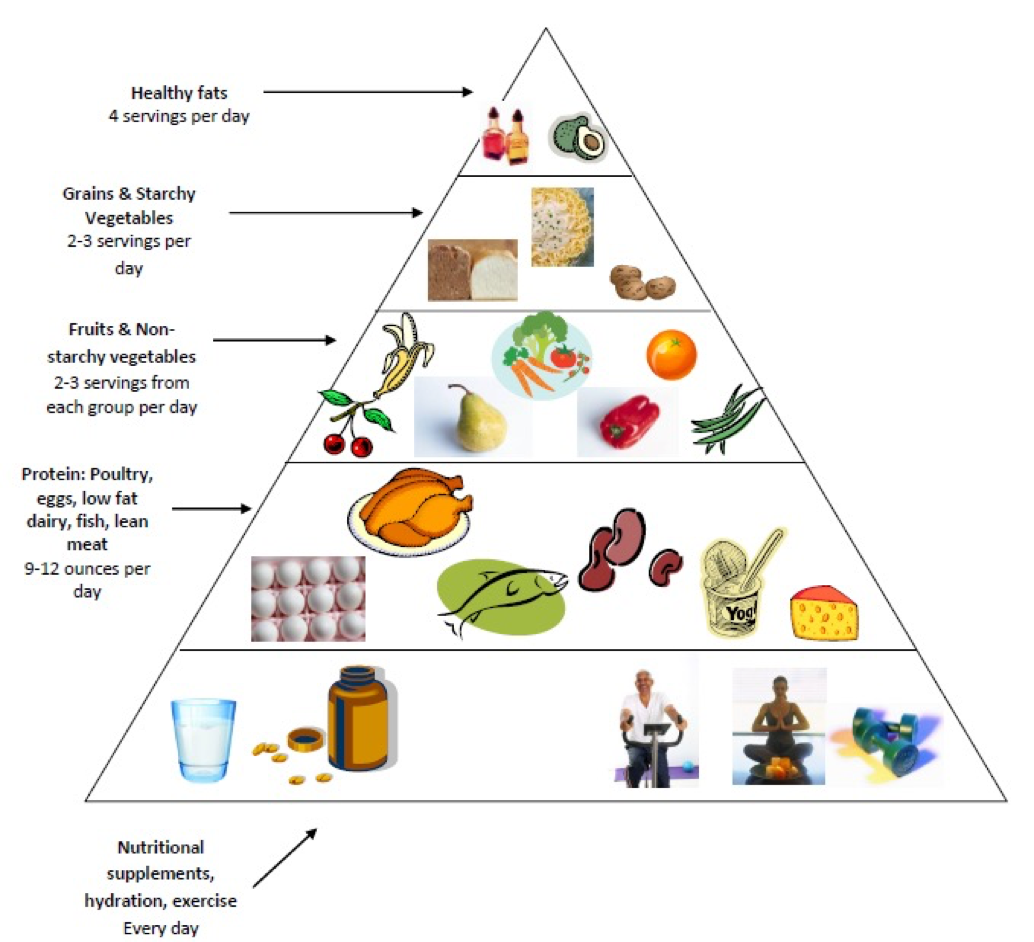 Bariatric Food Guide Pyramid and Plate Model