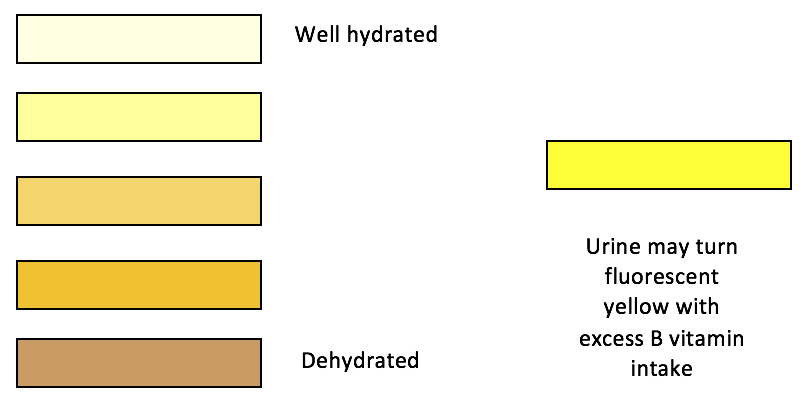 Hydration Status Urine Color Chart